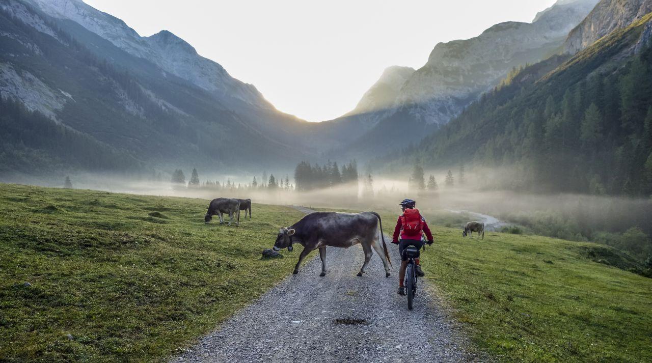 E-Mountainbike Einsteiger Bayern